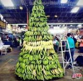 Con bananas!!
